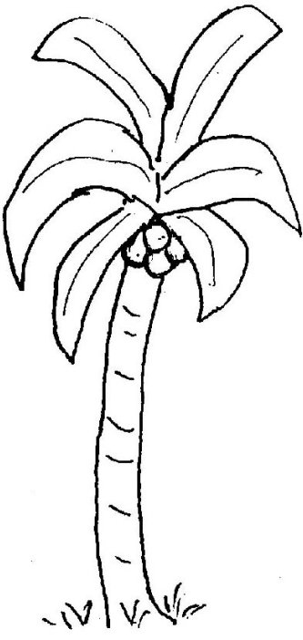 Palm Tree to Color